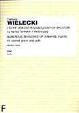 Okładka: Wielecki Tadeusz, Liczne odnogi rozgałęzionych splotów na klarnet, fortepian i wiolonczelę (partytura)