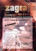Okładka: , Zagraj to sam 2003/08