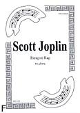 Okładka: Joplin Scott, Paragon Rag na gitarę