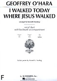 Ok�adka: O'Hara Geoffrey, I Walked Today Where Jesus Walked (ABar)