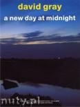 Okładka: Gray David, A New Day At Midnight
