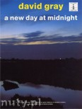 Okładka: Gray David, A New Day At Midnight