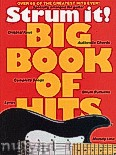 Ok�adka: R�ni, Big Book Of Hits
