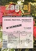 Okładka: , Zagraj to sam 2009/06