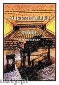 Ok�adka: Rybicki Wojciech, Etiudy na fortepian