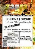 Okładka: Wiśniewski Janusz, Zagraj to sam 2008/11